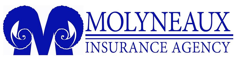 Molyneaux Insurance Agency | insurance agency | 204 N Front St, Sunbury, PA 17801, USA | 5702864978 OR +1 570-286-4978