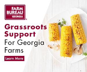 Georgia Farm Bureau | insurance agency | 2388 US-129 BUS, Jefferson, GA 30549, USA | 7063678877 OR +1 706-367-8877