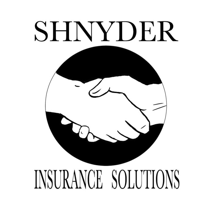 Shnyder Insurance Solutions | insurance agency | 425 N Sibley Ave, Litchfield, MN 55355, USA | 3206939482 OR +1 320-693-9482